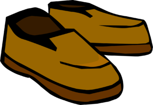 Brown_Shoes